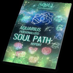 My Soul Manifestation Review